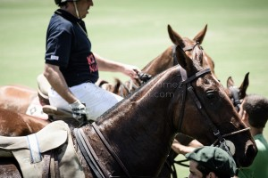 santamaria-polo-backstage-34