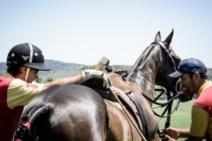 santamaria-polo-backstage-7
